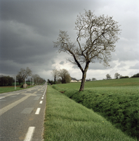 FRANCE. The Tarn et Garonne area in the Midi Pyrenees. The South of France. Road near Parisot. 2008