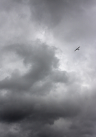 G.B. ENGLAND. Kent. Glider near Hollingbourne.2009. 02265046990| 写真素材・ストックフォト・画像・イラスト素材|アマナイメージズ