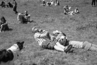 GB. Wales. Tintern. Dog show. 2013 02265047294| 写真素材・ストックフォト・画像・イラスト素材|アマナイメージズ