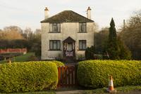 GB. England. Somerset. Watching Murmuration. 2012. 02265047433| 写真素材・ストックフォト・画像・イラスト素材|アマナイメージズ