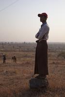 MYANMAR. Farming work between Meiktila and Magway. 02265047444| 写真素材・ストックフォト・画像・イラスト素材|アマナイメージズ