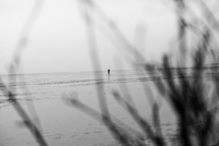 GERMANY. Cuxhaven, Lower Saxony. April 2013. A person walks through the mudflats of Cuxhaven. 02265047564| 写真素材・ストックフォト・画像・イラスト素材|アマナイメージズ