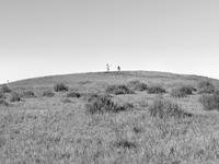 USA. Mountain view, CA. 2013. 02265047586| 写真素材・ストックフォト・画像・イラスト素材|アマナイメージズ
