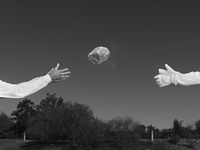 USA. Round Rock, Texas. 2013. Shopping Mall parking lot. 02265047631| 写真素材・ストックフォト・画像・イラスト素材|アマナイメージズ