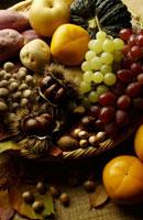秋の味覚 02266003860| 写真素材・ストックフォト・画像・イラスト素材|アマナイメージズ