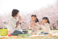 桜の下でお弁当を食べる女の子の姉妹とお母さん 02266016187| 写真素材・ストックフォト・画像・イラスト素材|アマナイメージズ