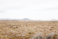 アリゾナ 02276000083| 写真素材・ストックフォト・画像・イラスト素材|アマナイメージズ