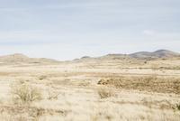 アリゾナ 02276000097| 写真素材・ストックフォト・画像・イラスト素材|アマナイメージズ