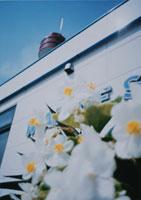 花と船の科学館  東京都