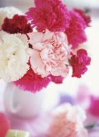 カーネーションの小さな花束