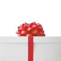 赤いリボンのプレゼント 02284001417| 写真素材・ストックフォト・画像・イラスト素材|アマナイメージズ