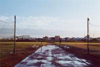 水溜りのできた通路と脇のベンチ 02285000356| 写真素材・ストックフォト・画像・イラスト素材|アマナイメージズ