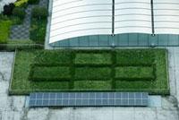 ソーラーパネルと屋上緑化