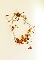 赤い実の枝で作られた手作りのリース 02285000586| 写真素材・ストックフォト・画像・イラスト素材|アマナイメージズ