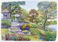 湖が横にある庭の風景 水彩イラスト