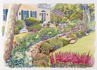 庭の生垣に咲く花の風景 水彩イラスト