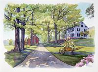 道にある木立 水彩イラスト