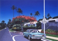 Hawaii 02290000065| 写真素材・ストックフォト・画像・イラスト素材|アマナイメージズ