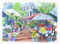 Flower Shop 02290000095| 写真素材・ストックフォト・画像・イラスト素材|アマナイメージズ
