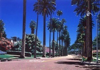 Beverly Hills2