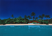 南の島 02290000155| 写真素材・ストックフォト・画像・イラスト素材|アマナイメージズ