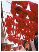 染色された毛糸   マラケッシュ モロッコ