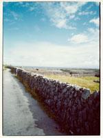 海へ続く石垣の道 イニシューマン島 アラン諸島 アイルランド