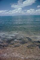 波打ち際の鯉の群れ ダーウィンシティ オーストラリア 02296000832| 写真素材・ストックフォト・画像・イラスト素材|アマナイメージズ