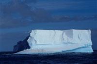 エレファント島の氷山と温暖化 夏 南極