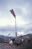 夏のポートロックロイ基地のごみとジェンツーペンギン 南極