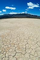 砂漠 02296001719| 写真素材・ストックフォト・画像・イラスト素材|アマナイメージズ