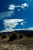 砂漠 02296001721| 写真素材・ストックフォト・画像・イラスト素材|アマナイメージズ