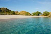 コモド島の砂浜
