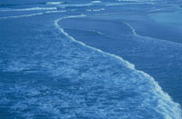 波打際 02296003124| 写真素材・ストックフォト・画像・イラスト素材|アマナイメージズ