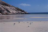 海と青空 02296003132| 写真素材・ストックフォト・画像・イラスト素材|アマナイメージズ