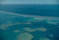 サンゴ礁の海の空撮