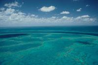 サンゴ礁の海の空撮 02296003155| 写真素材・ストックフォト・画像・イラスト素材|アマナイメージズ