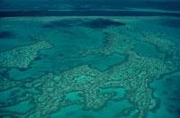 サンゴ礁の海の空撮 02296003158| 写真素材・ストックフォト・画像・イラスト素材|アマナイメージズ