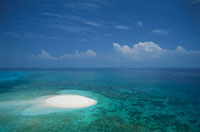 サンゴ礁の海の空撮 02296003159| 写真素材・ストックフォト・画像・イラスト素材|アマナイメージズ