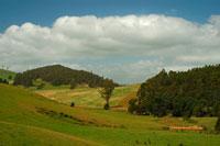 青空と雲 牧場の木々と緑