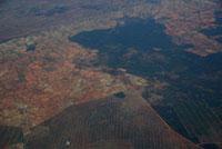 サイザル麻畑と保護区