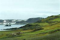 緑の南極 02296003900| 写真素材・ストックフォト・画像・イラスト素材|アマナイメージズ