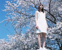 日本人女性と桜