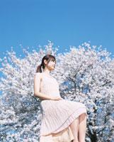 座る日本人女性と桜と青空