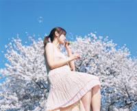 シャボン玉を吹く日本人女性と桜