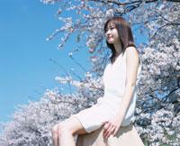 座る日本人女性と桜