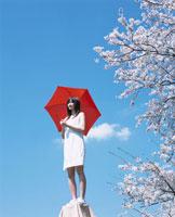 赤い傘を差す日本人女性と桜と青空
