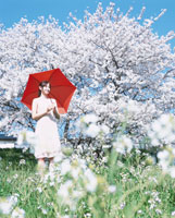 赤い傘を差す日本人女性と桜と花