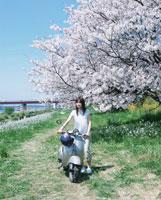 単車をひく日本人女性と桜 02299000527| 写真素材・ストックフォト・画像・イラスト素材|アマナイメージズ