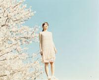 ワンピースを着た日本人女性とサクラの木